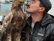 Хищные птицы защищают завод от крылатых воришек