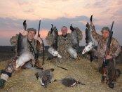 Патроны для правильной гусиной охоты
