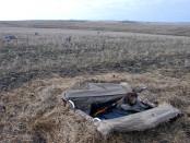 Маскировка на гусиной охоте