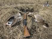 Как охотиться на гуся из засидки