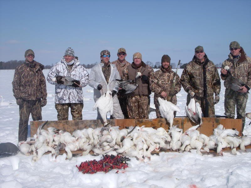 Охота на гуся по снегу